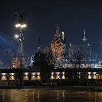 Каток перед замком...Будапешт. :: M Marikfoto
