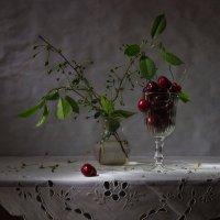 Весенний минимализм. :: Svetlana Sneg