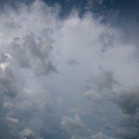 в преддверии дождя :: Роман Маканчук