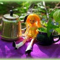 Лесное чаепитие :: Андрей Заломленков