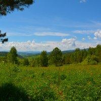 На перевале. :: Валерий Медведев