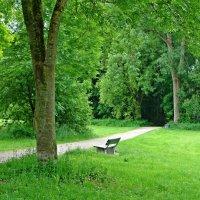 Майские отенки зеленого... :: Galina Dzubina
