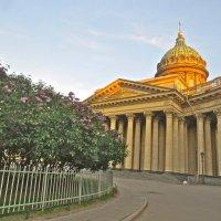 У Казанского собора :: Елена