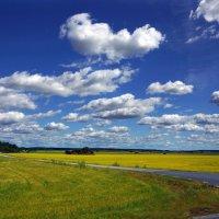 Облака. :: Наталья Иванова