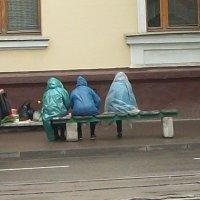 Три девицы под окном торговали вечерком... :: Галина Бобкина