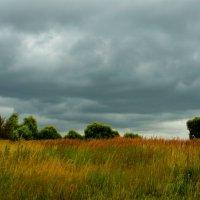 Пейзаж с грозовыми облаками. :: Александр Атаулин