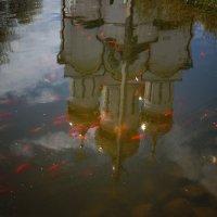 Отражение красоты :: kolyeretka