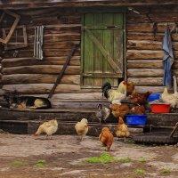 На деревенском подворье... :: Альмира Юсупова
