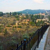 Иерусалим. Вид на Эйн Карем. :: Игорь Герман