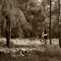 В лесу :: Борис Херсонский