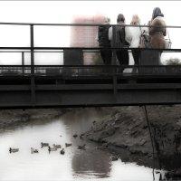 Мост :: Юлия окладникова