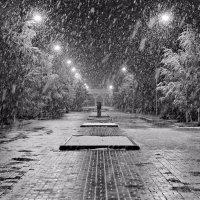 погода :: Олег Белан