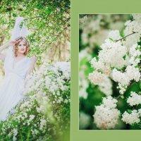 Весна :: Александра Фирсова