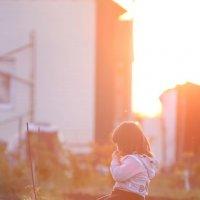 Солнечный котёнок :: Владимир Скибин