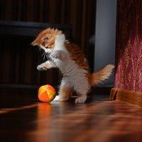 Великий маг и заклинатель мячиков... :: BoykoOD