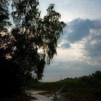 Сухая протока.  Склоняясь над павшим… :: Алексей (АСкет) Степанов