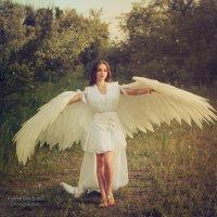 Ангел :: Ксения Довгопол