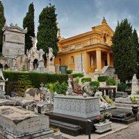 старое кладбище Ницца :: Игорь 74