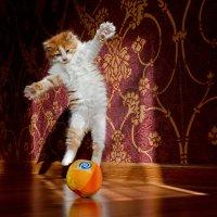 Я умею летать !!! :: BoykoOD