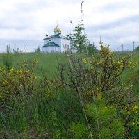 Арамашево. Казанская церковь :: Светлана Игнатьева