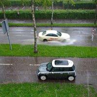 А дождик льёт как из ведра.... :: Galina Dzubina