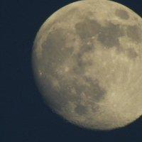 Соло луны :: koolio Н