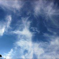 Облачное небо :: Татьяна Пальчикова