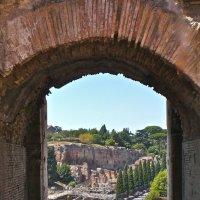 Вид на Римский форум из Колизея :: Елена