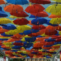 Зонтичные... переулки.. :: tipchik