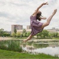 «Отчего люди не летают так, как птицы?...» :: Борис Борисенко