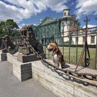 На Даче Безбородко, или приключения ... в России :: Тата Казакова