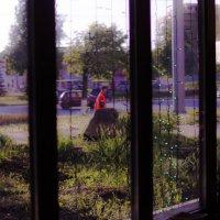 Улица :: Георгий Морозов