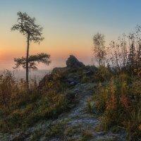Туманный восход :: vladimir Bormotov