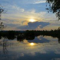 Вечерний пейзаж. :: Валерий Медведев