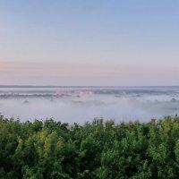 Майский туман! :: Владимир Шошин