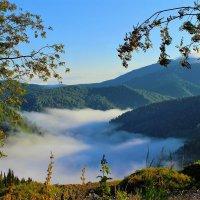 Тишина... лишь под туманом речка журчит :: Сергей Чиняев