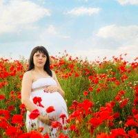 В маковом раю.... :: Юлия Роденко