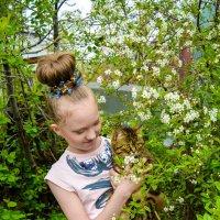 показывает кошки цветы :: Света Кондрашова