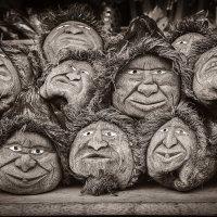 Крутые кокосы :: Владимир Печенкин