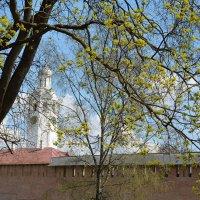 Весна в Новгородском кремле :: Константин Жирнов