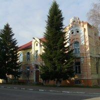 Адимнистративное  здание  в   Богородчанах :: Андрей  Васильевич Коляскин