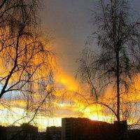 Утреннее небо  в городе :: Leonid Tabakov