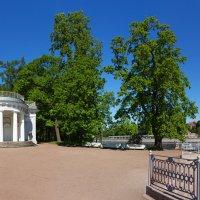 Елагин остров. :: Александр Истомин