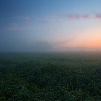 Свет хрустальной зари.Свет над миром встающий ©... :: Roman Lunin