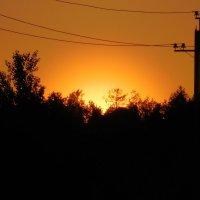 Вот, вот взойдет над лесом солнце :: Наталья Пендюк Пендюк