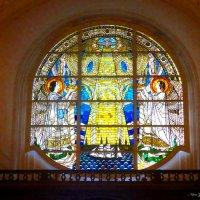 Гамбург. Храм Святого Михаила. Витраж :: Nina Yudicheva