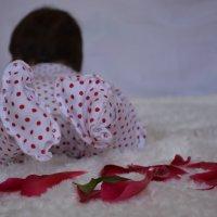красота маленькая :: татьяна вашурина