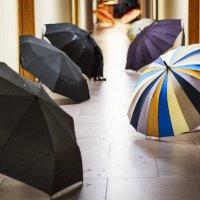 Встреча после дождя :: aleksandr smirnof