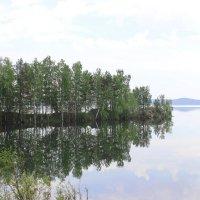 июнь :: Тыртышных Светлана