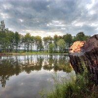 Брутальность холодного лета... :: Андрей Войцехов